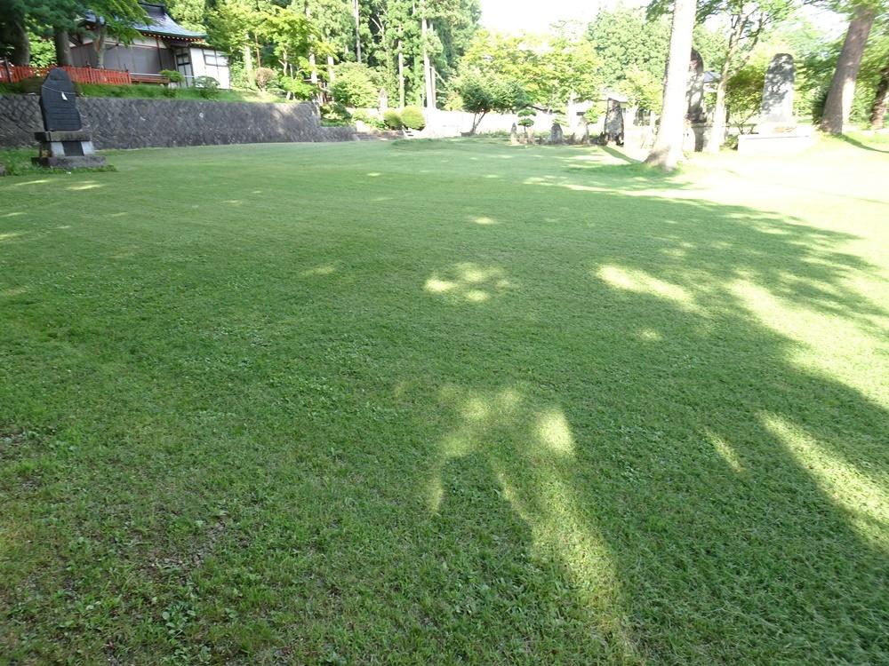 芝刈り作業_c0111229_18213488.jpg