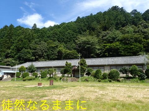 旧門谷小学校・アサギマダラ飛来準備_d0285540_21434263.jpg