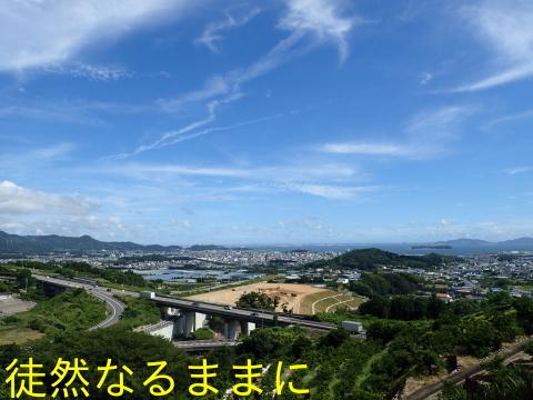 旧門谷小学校・アサギマダラ飛来準備_d0285540_21583476.jpg