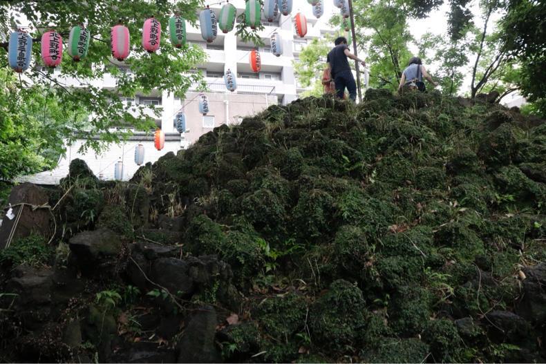 7月1日に都内で7つの富士山へ_c0060143_13100139.jpg