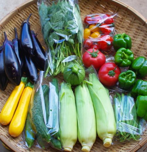 今週の野菜セット(8/11~8/15着)_c0110869_12345388.jpg