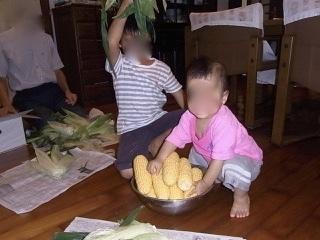 トウモロコシをいただく_e0158687_21473787.jpeg