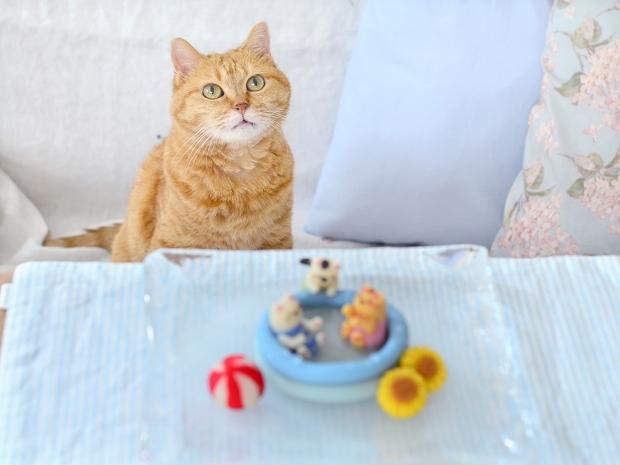 世界猫の日2020 おうちプールではしゃぐ猫練り切り_d0025294_17084959.jpg