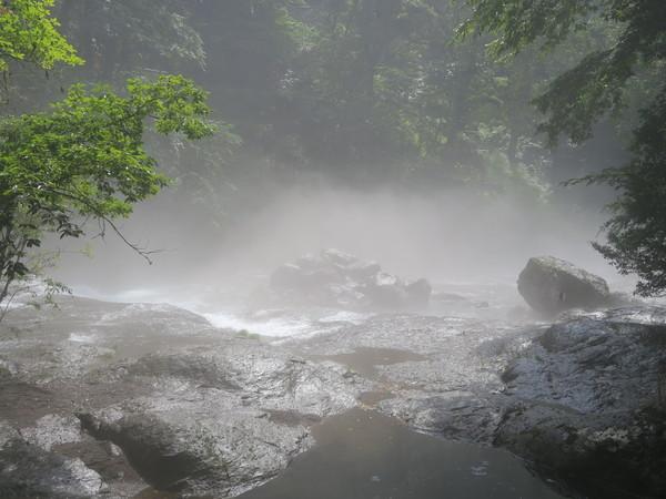 涼を求めて~阿蘇高原、菊池渓谷へ 2020.08.09_a0166196_13384339.jpg