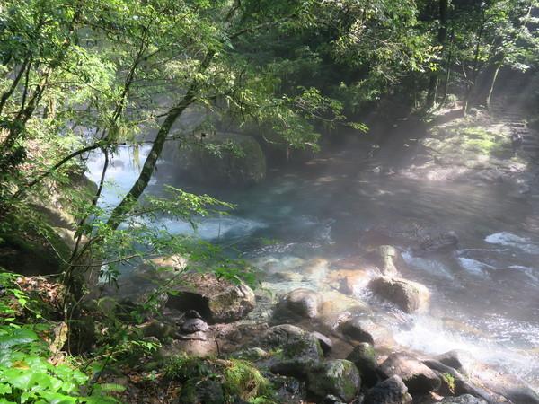 涼を求めて~阿蘇高原、菊池渓谷へ 2020.08.09_a0166196_13401618.jpg