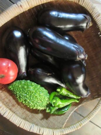 魚沼から野菜の宝船_a0203003_08364001.jpg