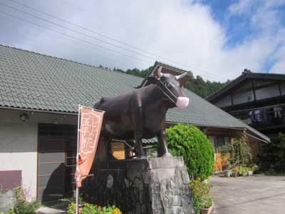 コロナ禍で牛にもマスクを_c0194003_09181319.jpg