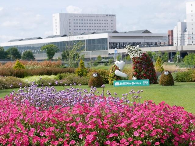 ガーデンセンター周辺開花情報_e0336214_12573393.jpg