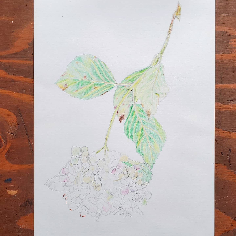 絵画教室_f0208315_13340186.jpg