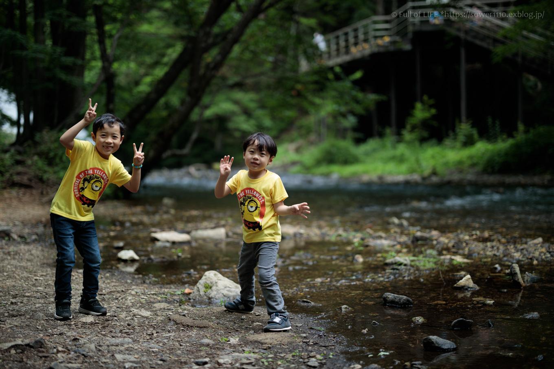 しっとり爽やか 奥日光の川辺歩き「湯滝」_c0369219_16143287.jpg