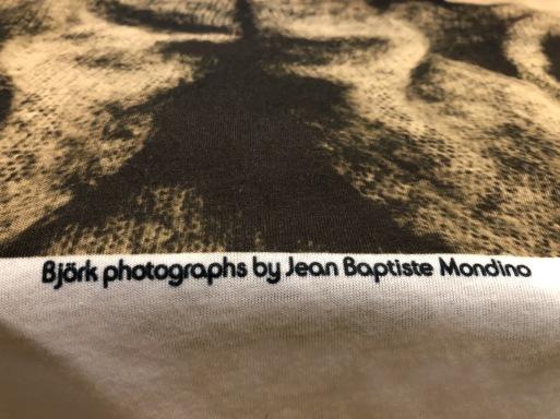 8月11日(火)入荷!ビョーク Björk Tシャツ!_c0144020_13074736.jpg