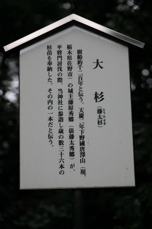 一之宮貫前神社_d0035921_05475235.jpg
