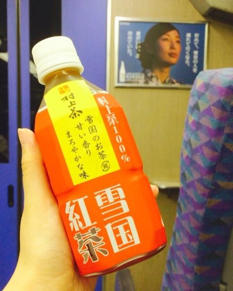 上越新幹線で新潟へ_c0404636_22162358.jpg