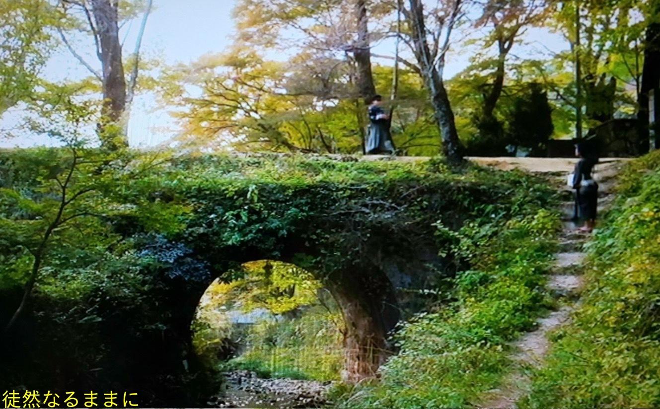 旧門谷小学校・アサギマダラ飛来準備_d0285540_05382457.jpg
