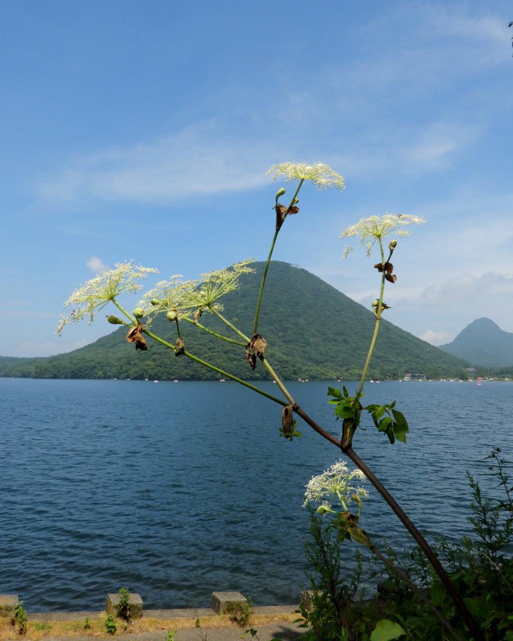 榛名湖畔で 避暑ついで_c0305565_17480331.jpg