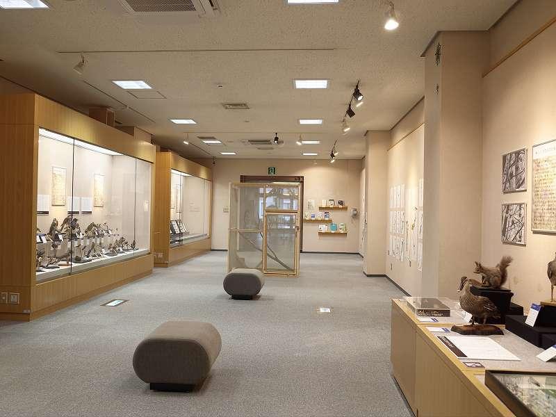 七飯町歴史館テーマ展開催してます_f0228071_14200980.jpg