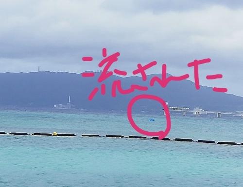流されたイルカのフロートが救出された朝!(Day3)_d0169072_06514176.jpg