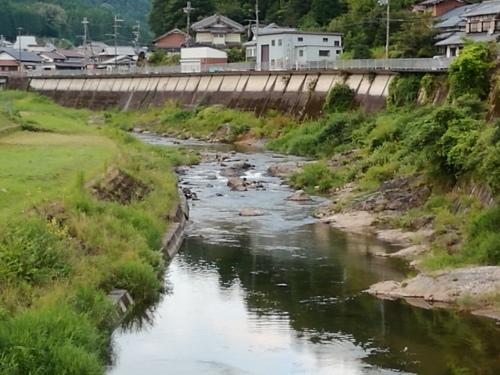 2020/8/11     水位観測  (槻の木橋より)_b0111189_05412623.jpg