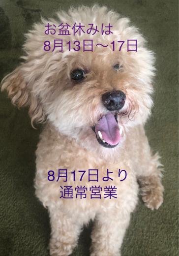 お盆休み_e0187233_11081375.jpg