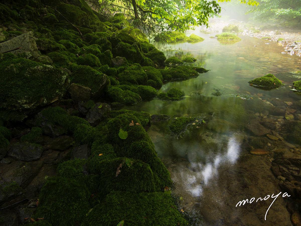 渇水の円原川_c0085877_06131282.jpg