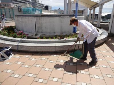 名古屋港水族館前花壇の植栽R2.8.12_d0338682_13083409.jpg