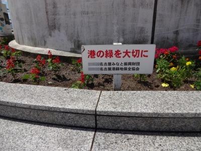 名古屋港水族館前花壇の植栽R2.8.12_d0338682_13095992.jpg
