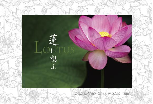 『蓮に想ふ』_d0239140_17491103.jpg