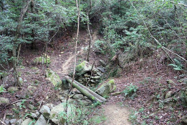 熊山登山 権現道コースを登る!の巻_f0325295_11475130.jpg
