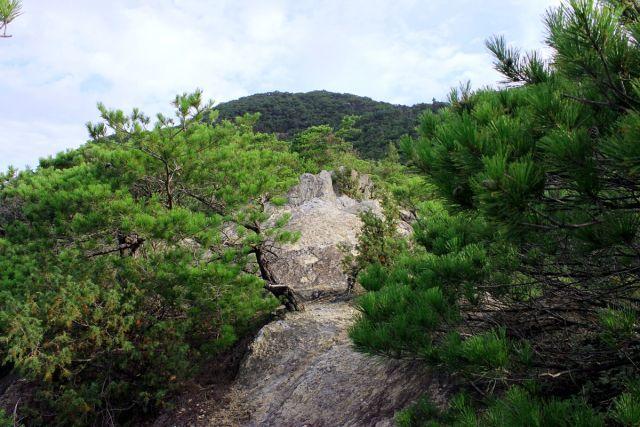 熊山登山 権現道コースを登る!の巻_f0325295_11475702.jpg