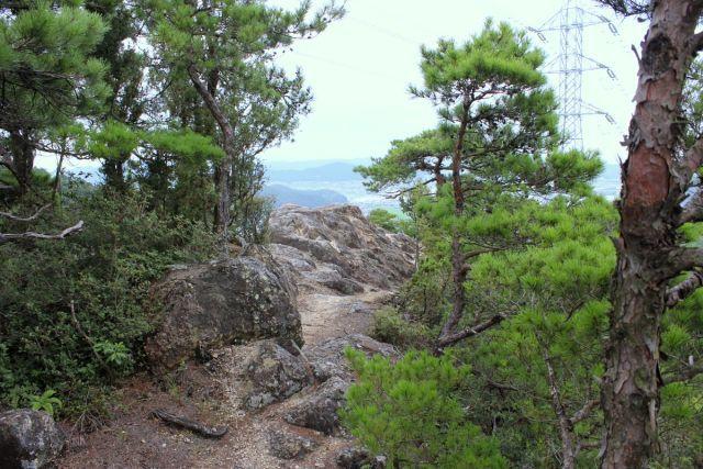 熊山登山 権現道コースを登る!の巻_f0325295_14160988.jpg