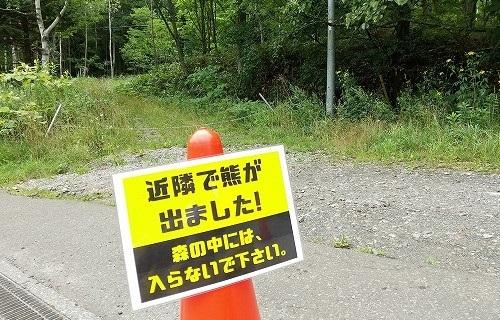 お散歩、二つの峠を越えて_c0048117_12374685.jpg