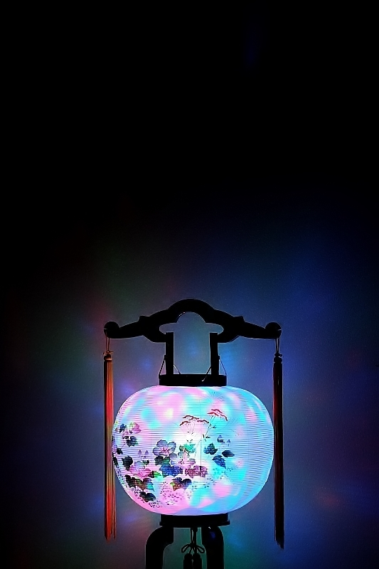盆提灯と牡丹燈籠_b0314043_08081582.jpg