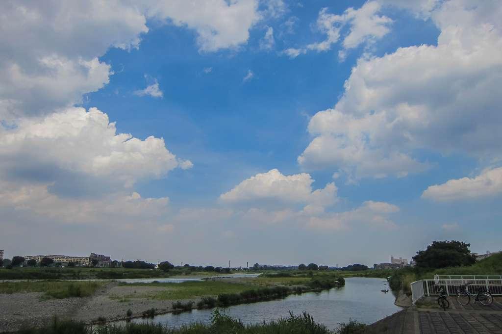 治されてきた多摩川の河川敷_f0044056_08505630.jpg