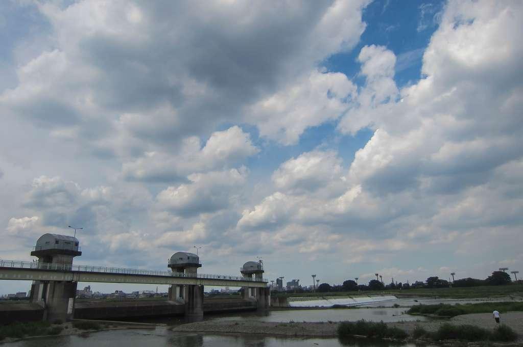 治されてきた多摩川の河川敷_f0044056_08514508.jpg