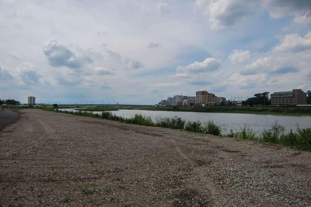 治されてきた多摩川の河川敷_f0044056_08542183.jpg
