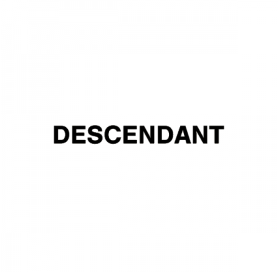 DESCENDANT_b0156682_18372277.png