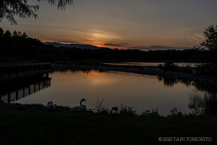 湖畔の夕景_d0039493_20380998.jpg