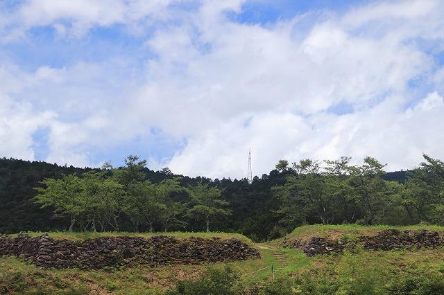 真夏の赤木城跡散策(その2)(撮影:8月10日)_e0321325_11032403.jpg