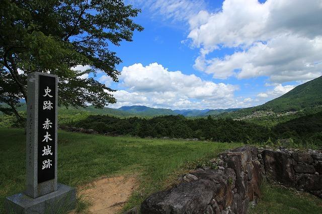 真夏の赤木城跡散策(その3)(撮影:8月10日)_e0321325_11223908.jpg