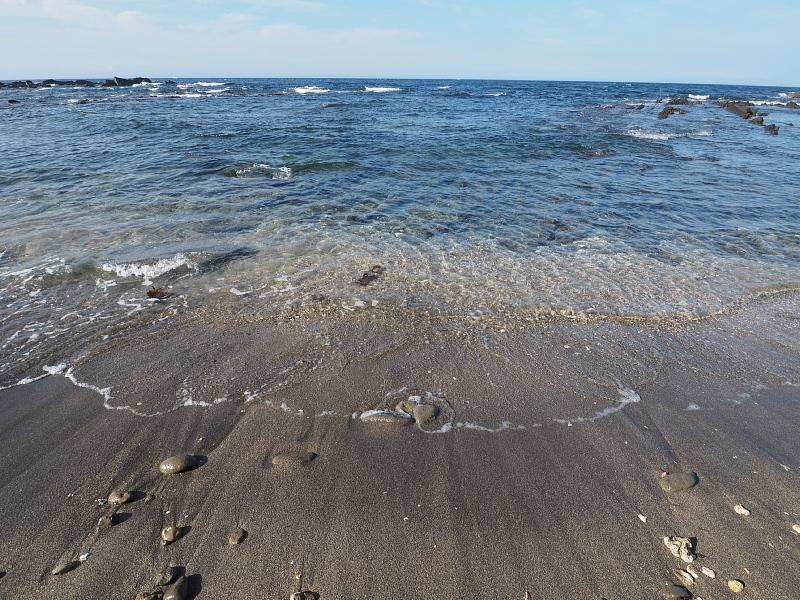 【さよならメッセージボード】白浜フラワーパーク Ocean\'s_b0008655_14532794.jpg