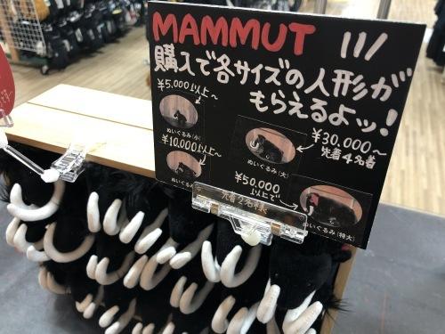 「MAMMUT」ぬいぐるみキャンペーン 開催!_d0198793_11180871.jpg