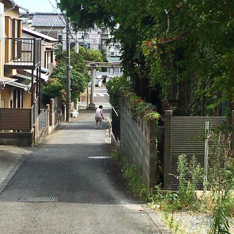 吾妻山から浅間神社へ_c0060143_05024416.jpg