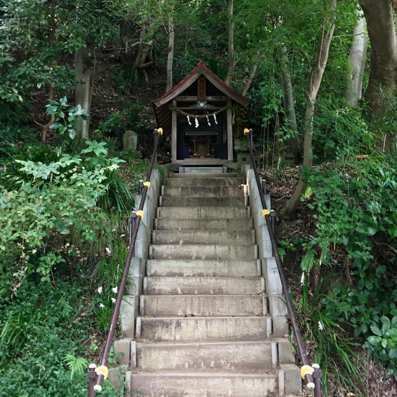 吾妻山から浅間神社へ_c0060143_05024567.jpg