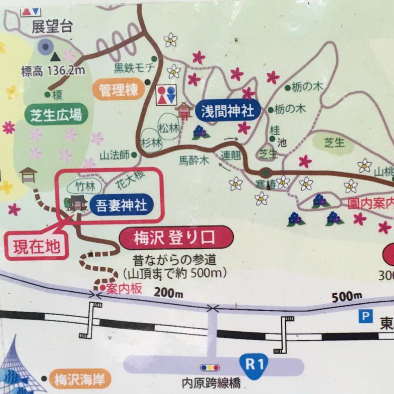 吾妻山から浅間神社へ_c0060143_05032922.jpg