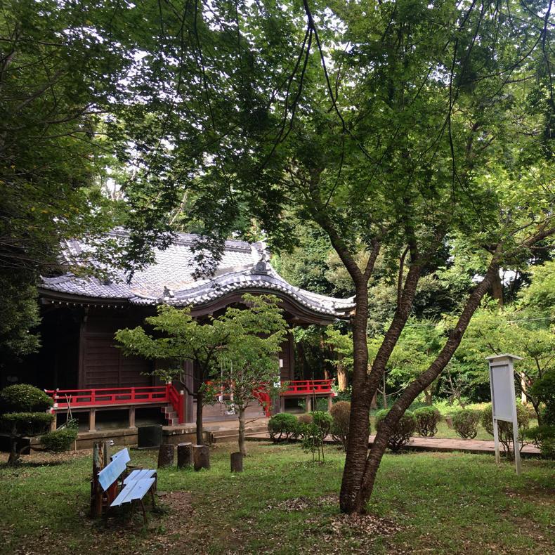 吾妻山から浅間神社へ_c0060143_05033079.jpg