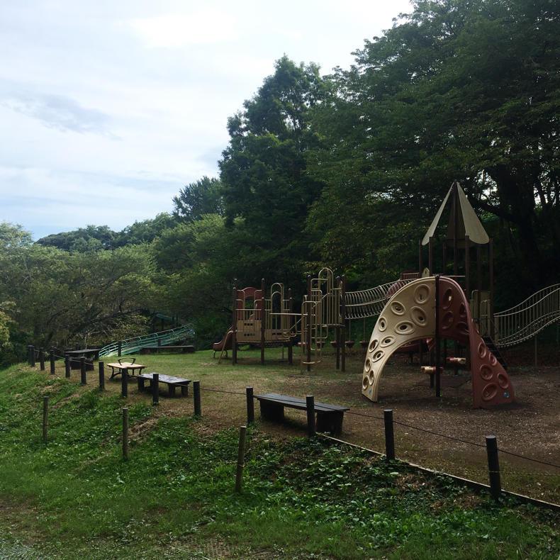 吾妻山から浅間神社へ_c0060143_05041029.jpg