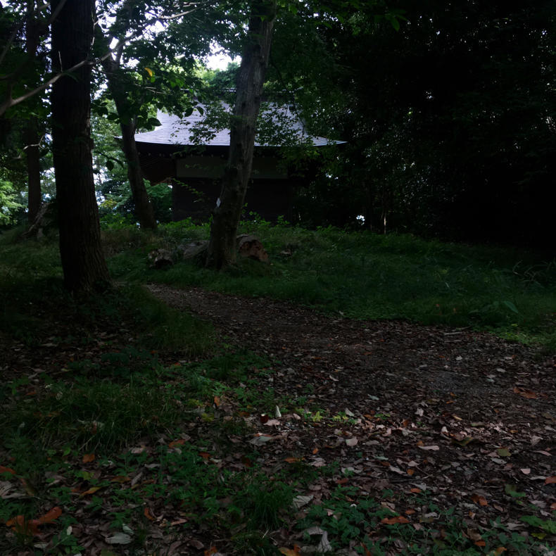 吾妻山から浅間神社へ_c0060143_05041343.jpg