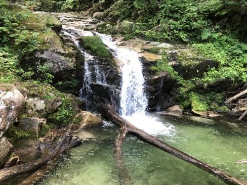 武奈ヶ岳 難関の八淵の滝ルートで攻略!_b0200358_12514523.jpeg