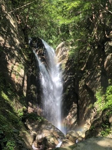 武奈ヶ岳 難関の八淵の滝ルートで攻略!_b0200358_13004307.jpeg