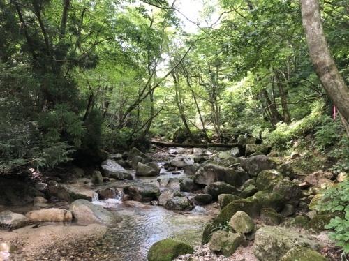 武奈ヶ岳 難関の八淵の滝ルートで攻略!_b0200358_13013281.jpeg